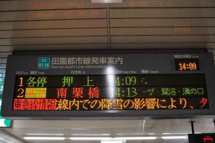 DSC01490 (800x532).jpg