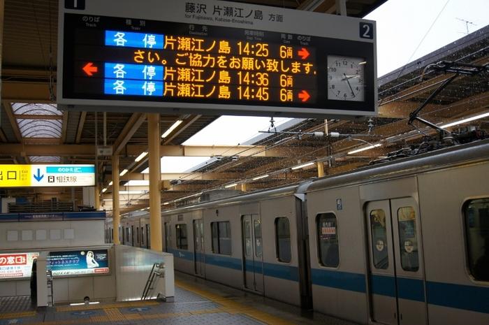 DSC01513 (800x532).jpg