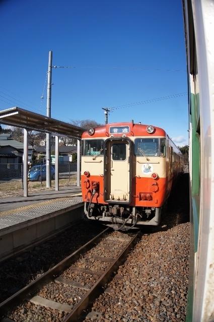 DSC01988 (425x640).jpg