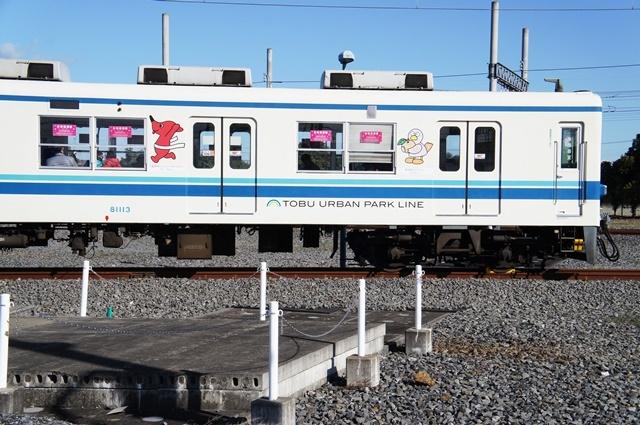 DSC03761.jpg