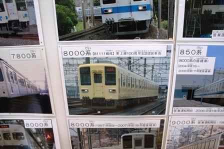 DSC03784.jpg