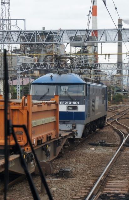 DSC04151 (411x640).jpg