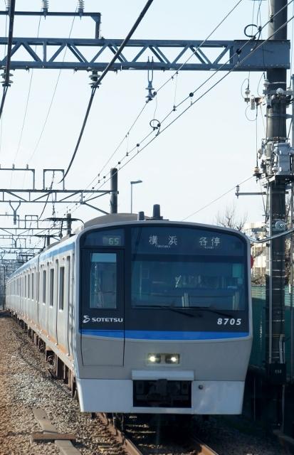 DSC04880 (413x640).jpg